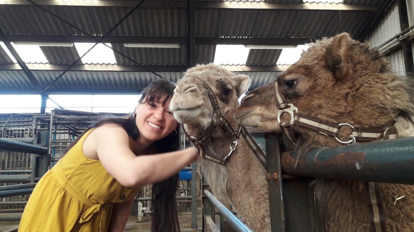ich mit Kamel